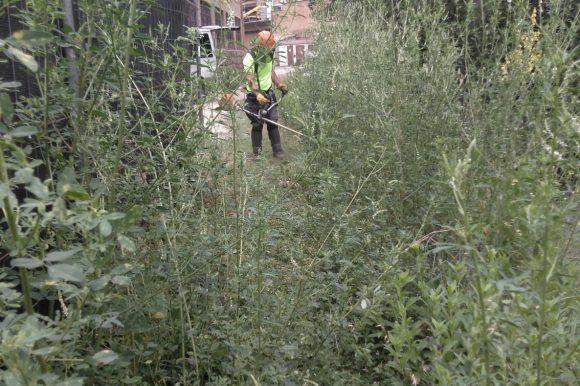 L'Ajuntament de Puig-reig contracta el Taller Coloma per la neteja dels camins de la ruta de les colònies
