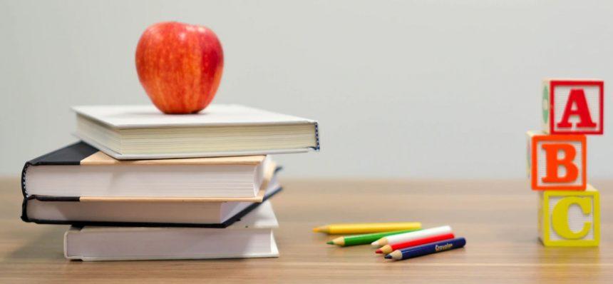 Ajuts per a llibres i material escolar 2020