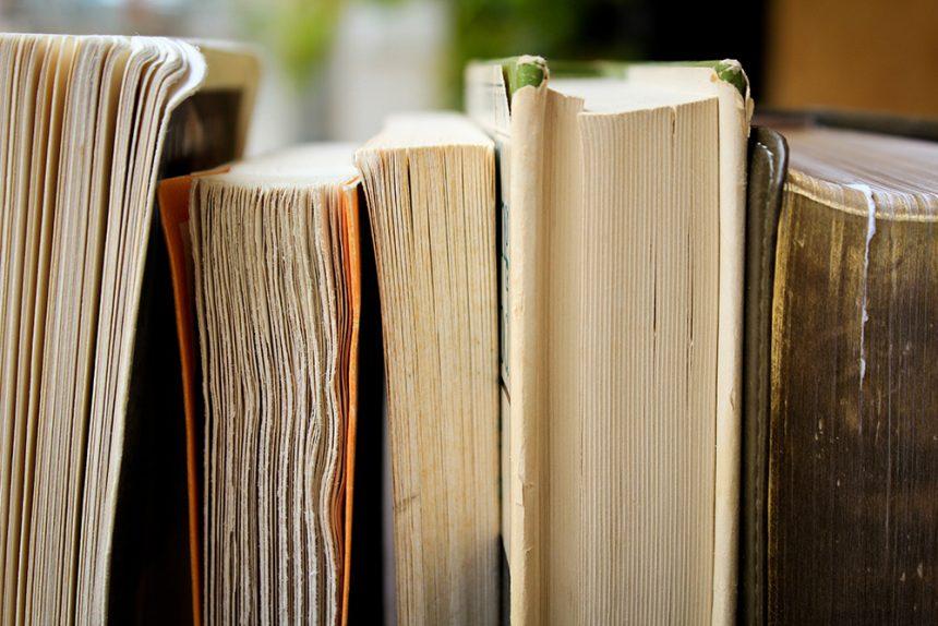 Activitats de la Biblioteca Guillem de Berguedà curs 2017-2018